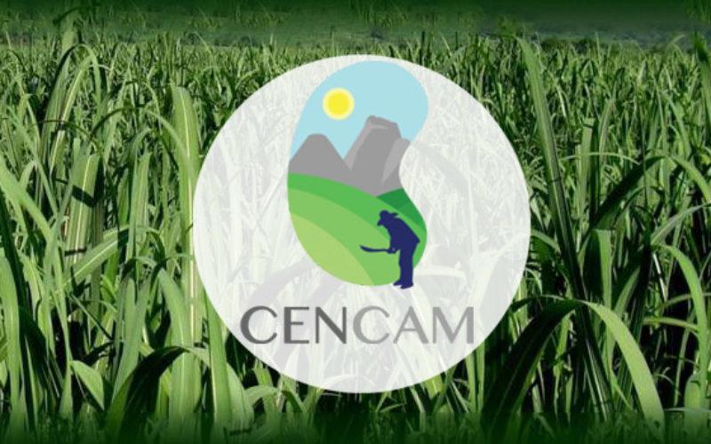 Declaración de la Junta del CENCAM